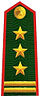 Vietnam Border Defense Force Colonel.jpg