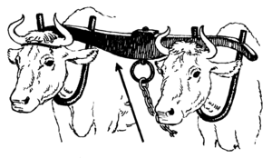 Line art drawing of a yoke