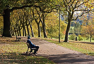 English: Gladstone Park A gentleman enjoys the...