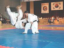 Hapkido5.jpg