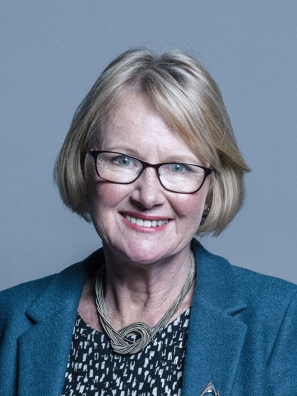 Mary Watkins Baroness Watkins of Tavistock Wikipedia