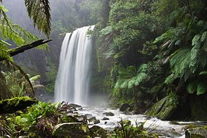 English: Hopetoun Falls, Beech Forest, near Ot...