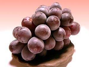 kyoho(grape)