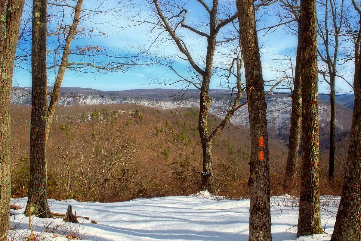 Black Forest Trail Wikipedia