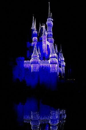 English: at Disney World's at night.