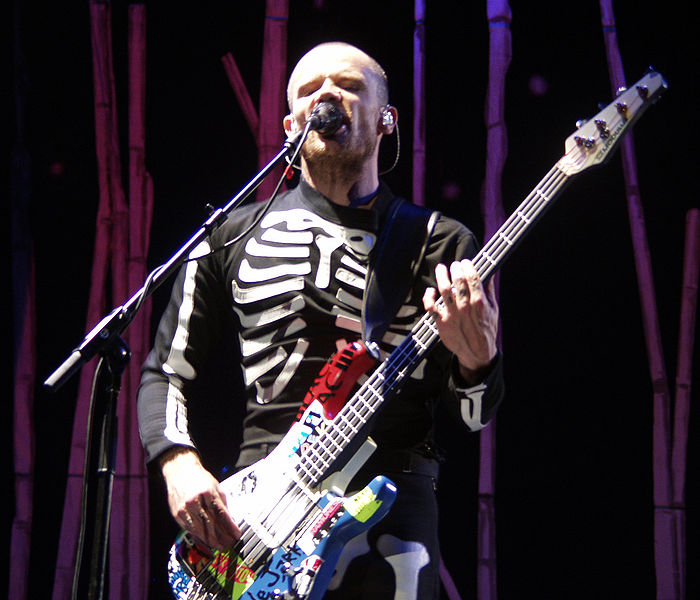 Flea, popular bajista de Red Hot Chili Peppers