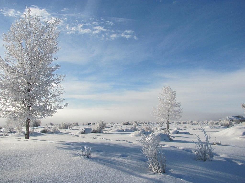 FileMorning Freezing Fog In Elko NevadaJPG Wikimedia