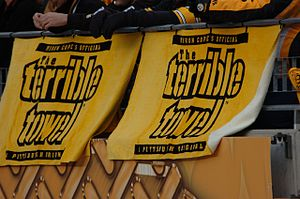 Fans of the Pittsburgh Steelers display their ...