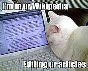 "A lolcat image using the ""Im in ur..."" format, featuring a cat ""editing"" the dwarf planet article on Wikipedia"
