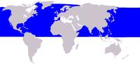 Distribuição de B. acutorostrata