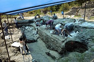 English: Dmanisi excavation site