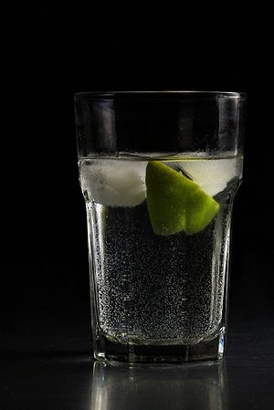 Gin and tonic with lime in a highball glass