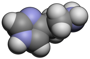 Histamine, Allergies, and Alkaline Ionized Water