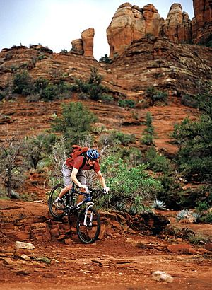 Mountain biking in Arizona desert, USA