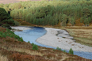 English: Shingle banks on the River Feshie The...