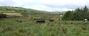 English: Western County Limerick A pastoral vi...