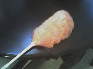 This is a feather duster, dusting a table.