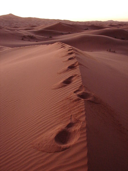 File:Footsteps in the dunes (3125413073).jpg