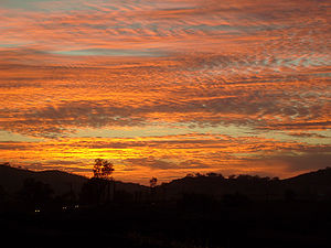 A colorful sky is often due to scattering of l...