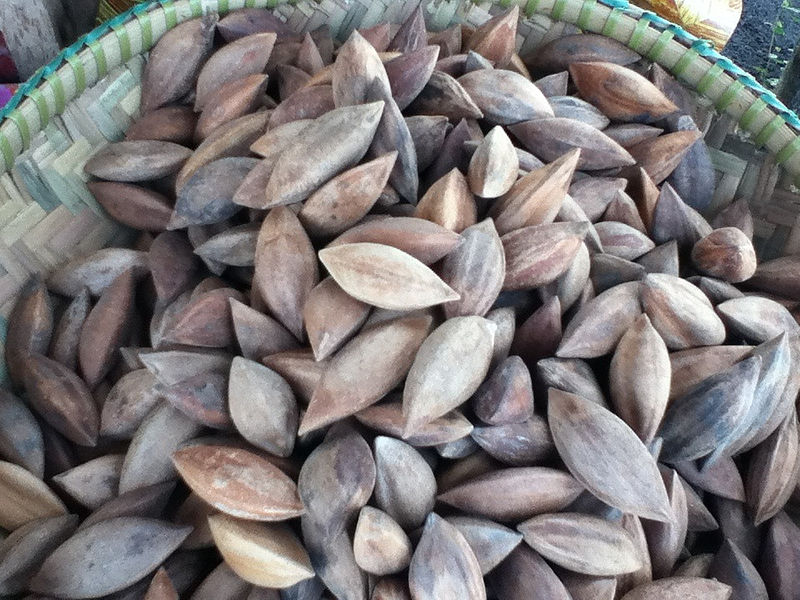 File:Pili nut (Canarium ovatum).jpg