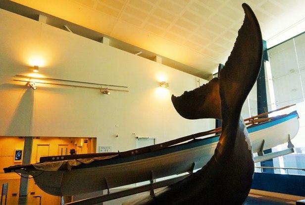 WA Maritime Museum - Joy of Museums - American Whaleboat 'Beetle' 2