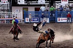 English: Saddle bronc riding; in rough stock e...