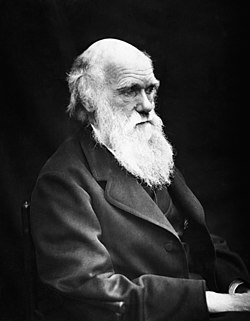 Charles Darwin 01.jpg