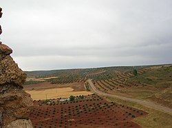 https://i1.wp.com/upload.wikimedia.org/wikipedia/commons/thumb/3/3d/Campo_Montiel_CREAL.JPG/250px-Campo_Montiel_CREAL.JPG