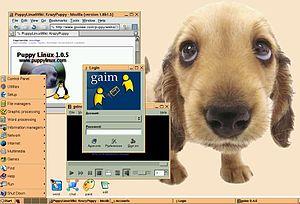 Capture puppy linux jwm
