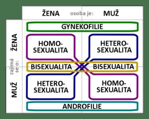 Sexual orientation diagram.