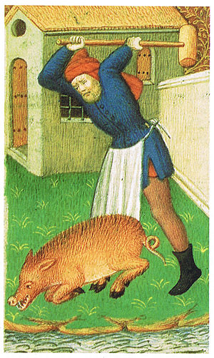 Illustration of medieval pig stunning, from Th...