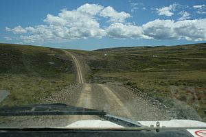 Typical Falklands Road!