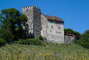 Südwestliche Seite der Habsburg