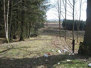 English: Roadside litter bin Why do they do it...