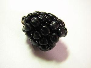 A blackberry.