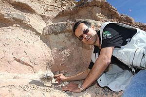 Português do Brasil: Fósseis do Dinossauro Parrudo