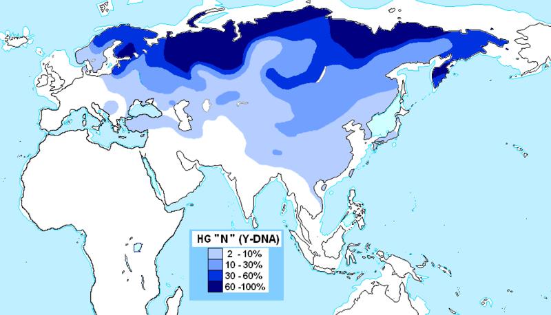 File:Haplogrupo N (ADN-Y).PNG