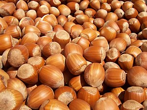 English: Lots of hazelnuts Français : Noisette...