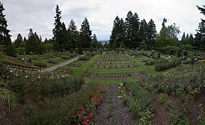 Wide angle image of the International Rose Tes...