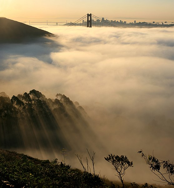 Golden Gate Bridge and San Francisco, and fog, from Marin County - Wikimedia image, panorama photo stitching by Mila Zinkova