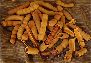 Tamarind fruits