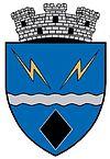Coat of arms of Rovinari