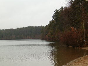 Walden Pond in the Spring
