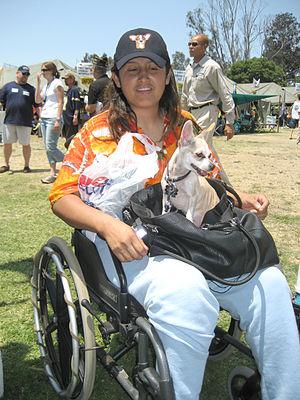 Homeless Woman Iraqi War Veteran in Wheelchair...
