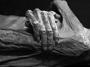Detail of the Guanajuato mummies, Mexico. Blac...