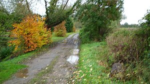 English: Public path near Fiddington I was goi...