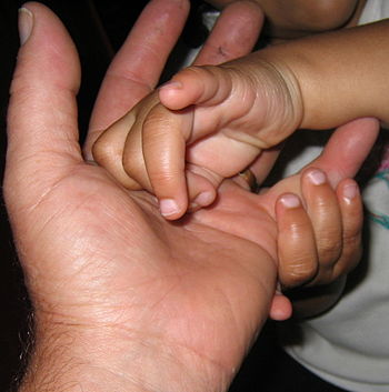 Daddy's Hand