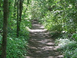 Natchez Trace Trail