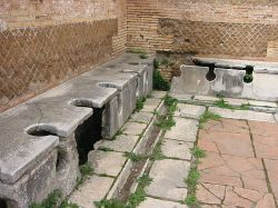 toilets siting squatting