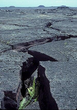 English: A view mauka (toward the volcano) of ...
